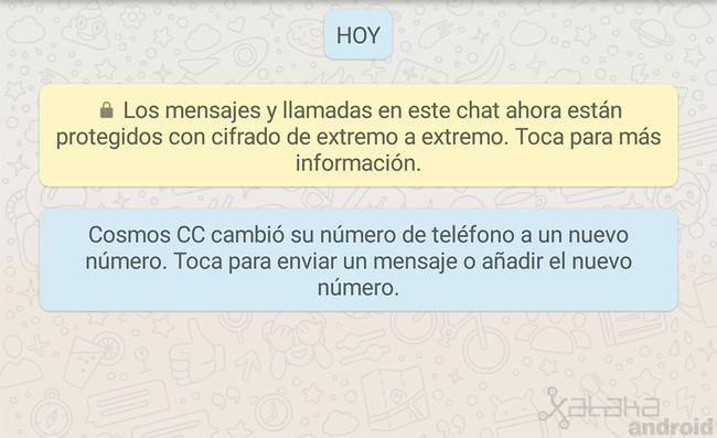 Notificar Cambio Whatsapp