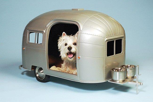 Caravana para mascotas