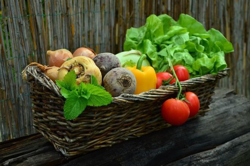 una dieta balanceada debe incluir la ingesta de varias porciones de frutas al día