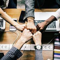 Wayra junta a inversores con una cartera de más de 2.000 millones de euros con 18 de sus startups más tecnológicas