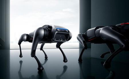 Cyberdog 08