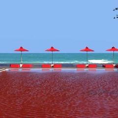 Foto 3 de 14 de la galería una-de-las-piscinas-mas-curiosas-del-mundo-red-pool-en-el-hotel-the-libray en Diario del Viajero