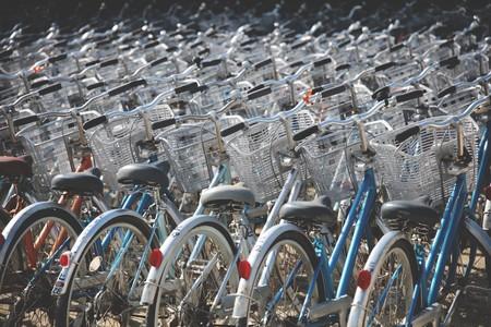 bicicleta-normas-circulacion