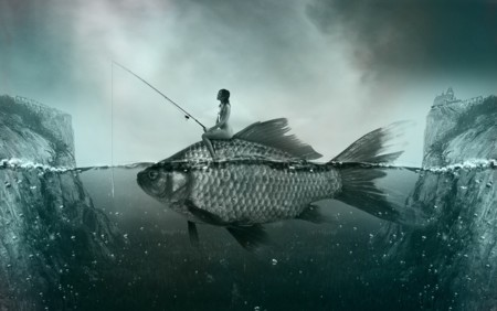 Fish 1372923 1920