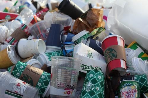 El reinado del plástico está llegando a su fin: estos son algunos de los candidatos a sustituirlo