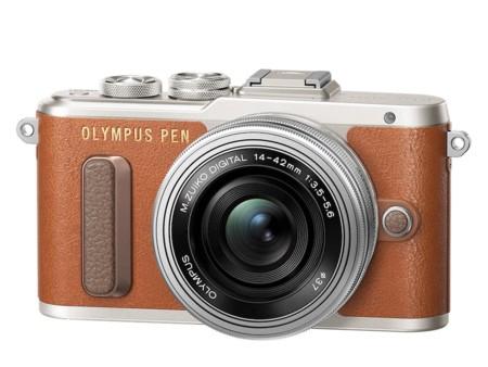 Pen E Pl8 Ez M1442ez Light Brown Silver Product 010