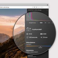 Vivaldi 1.12 ofrece más a los power users, con propiedades avanzadas de imagen y descargas