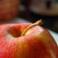 ¡Es temporada de manzanas! Aquí te decimos todo lo que necesitas saber para cocinar con ellas