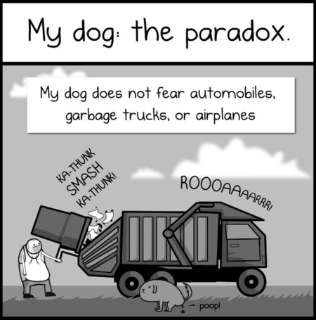 Dog Paradox Oatmeal