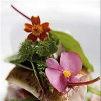Flores comestibles para un mayor aporte vitamínico