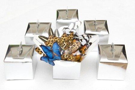 cajas de mariposasenlatripa