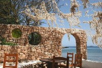 Ibiza será declarada `libre de deshaucios´
