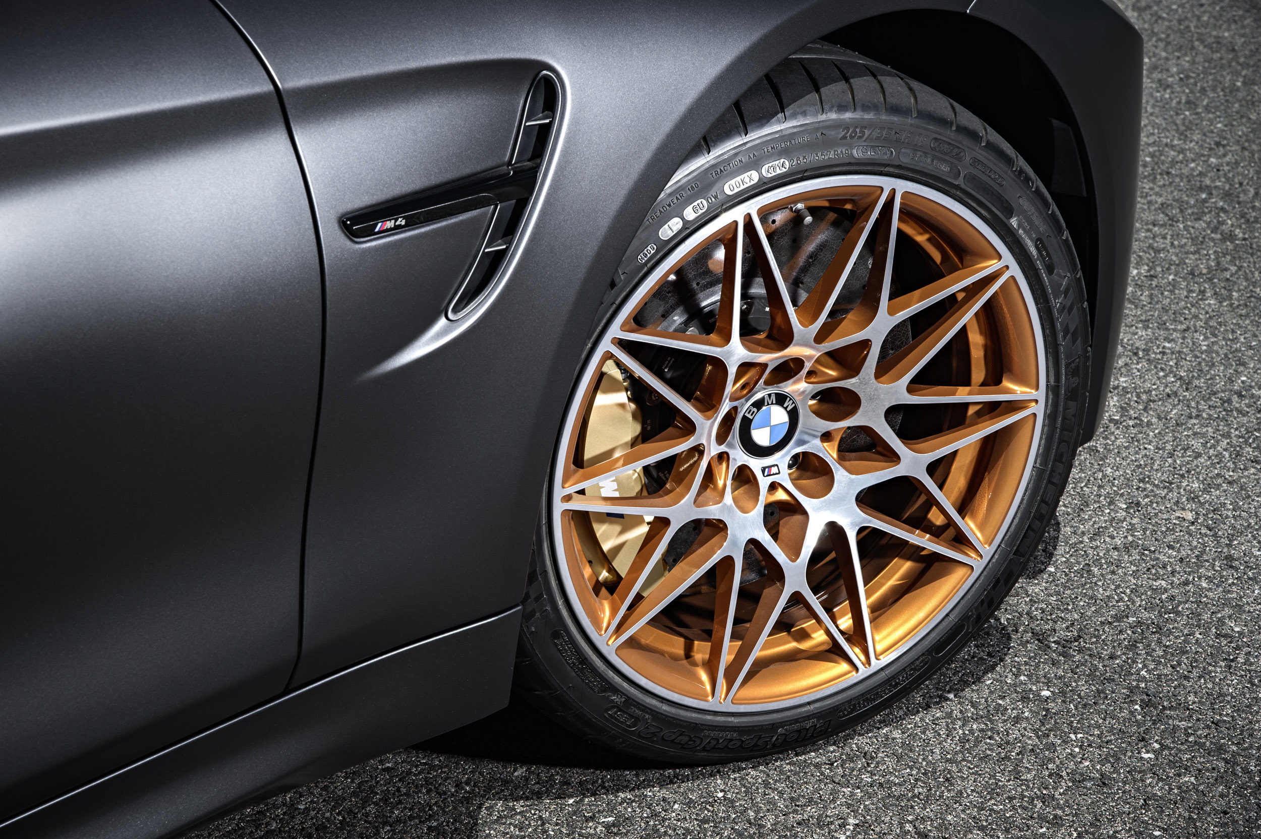 Foto de BMW M4 GTS (20/54)