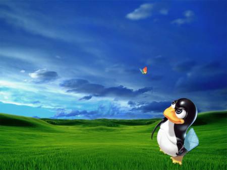Linux Fondo 3