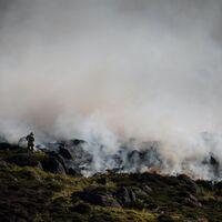 """Los incendios """"zombi"""" del Ártico: fuegos del pasado que siguen vivos bajo el hielo y la superficie"""