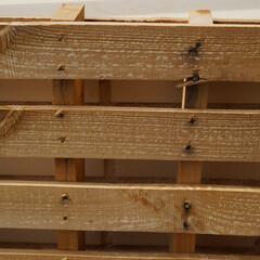 Foto 6 de 54 de la galería galeria-de-muestras-sony-a7c en Xataka Foto