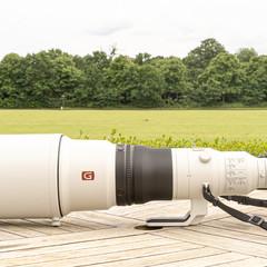 Foto 5 de 27 de la galería fe-600mm-f4-gm-oss-y-el-fe-200-600mm-f5-6-6-3-g-oss en Xataka Foto