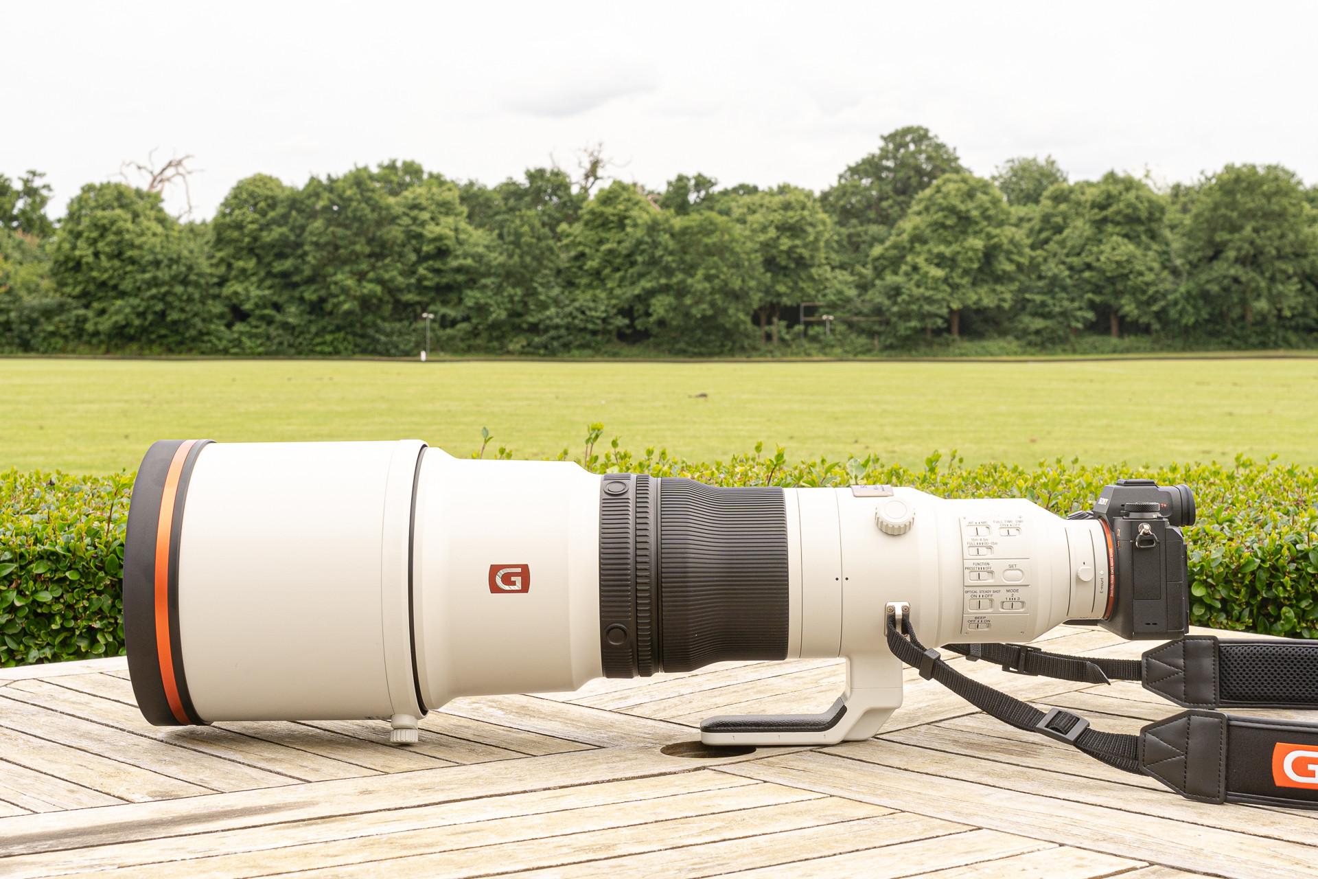 Foto de FE 600mm F4 GM OSS y el FE 200-600mm F5.6-6.3 G OSS (5/27)