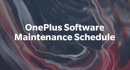 Oneplus Schedule
