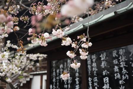 Japon Revoluciono La Igualdad Con Su Politica De Womenomics Pero Les Esta Dando Resultados 6