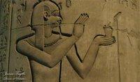 Preparaciones a la egipcia