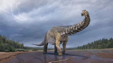 Hay una nueva especie de dinosaurio: 'Cooper' pesaba más de 70 toneladas y es el herbívoro más grande descubierto en Australia