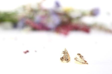 Pendientes Hojas Fauna Y Flora