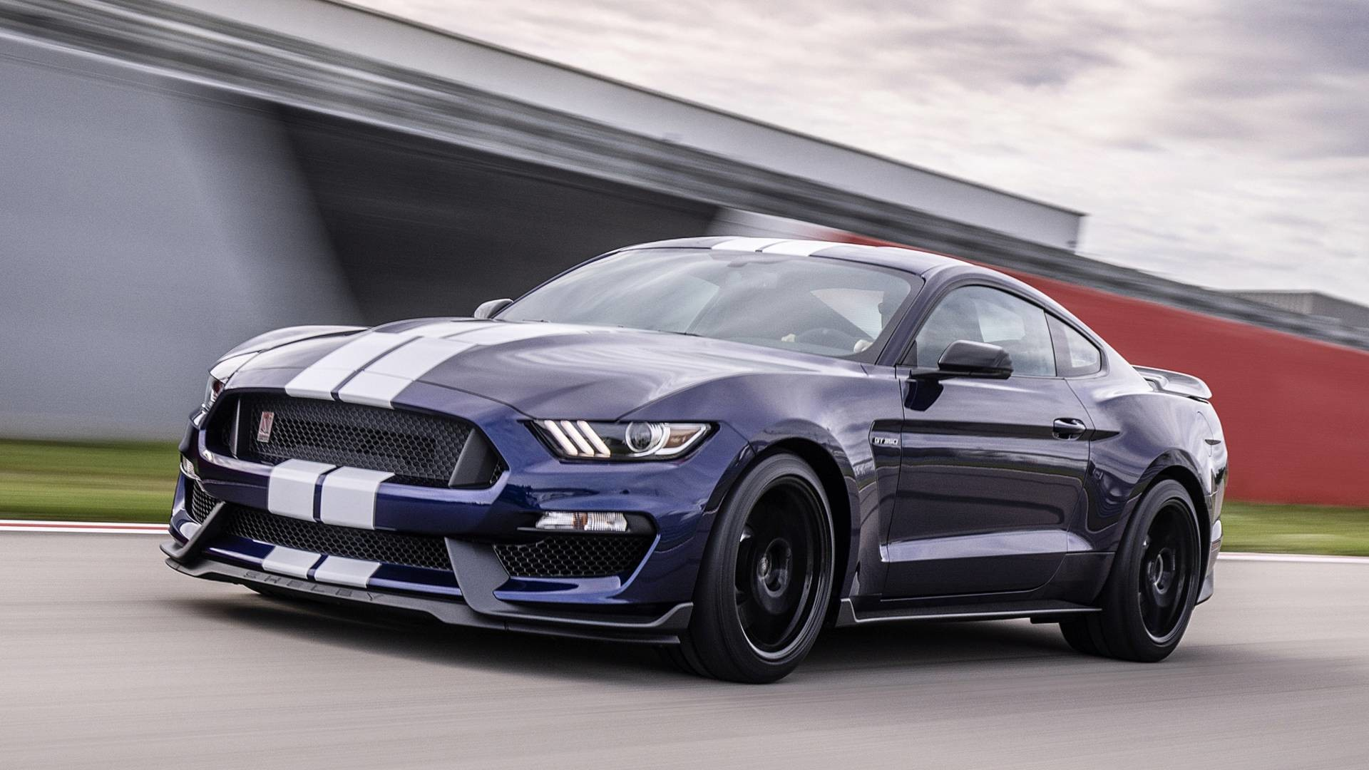 Foto de 2019 Ford Mustang Shelby GT350 (11/11)