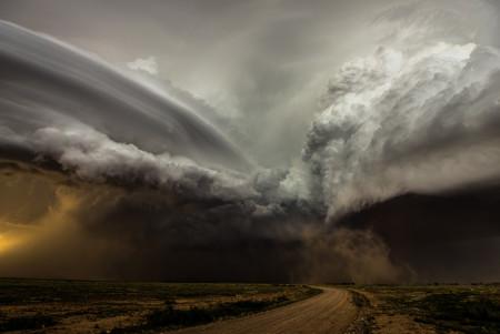 Camelia Czuchnicki Clash Of The Storms