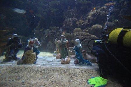 La Ciudad de las Artes y las Ciencias ofrece actividades muy navideñas a las familias