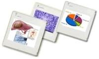 Herramientas online para la creación de presentaciones de diapositivas