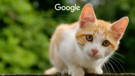 Guía completa de Stylish: cómo cambiar el aspecto de tus webs favoritas