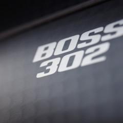Foto 26 de 38 de la galería 2012-ford-mustang-boss-302 en Motorpasión