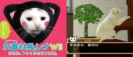 'Sukeban Shachou Rena', el juego de Wii más minoritario de todos los tiempos