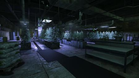 Bfh Growhouse 003