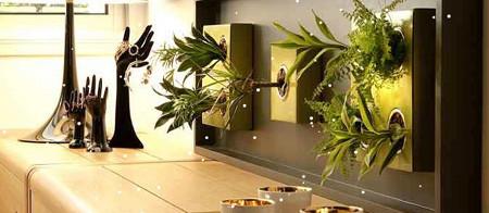Flowerbox da un giro a las plantas