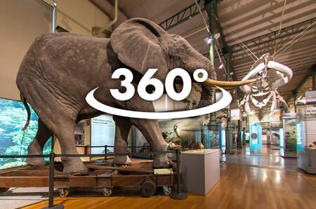 Museo De Ciencias Naturales 360 Living Madrid Adolfo Gosalvez