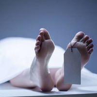 Por estos factores se desplaza ligeramente el cuerpo de un cadáver 17 meses después de haber muerto