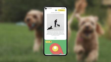 Con esta app puedes educar y entrenar a tu perro como un profesional