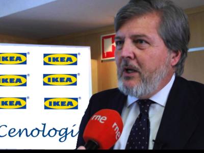 (Inocentada) Méndez de Vigo contará con representantes de IKEA en la comisión para el pacto educativo