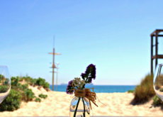El verano sabe a gazpacho, paella y moluscos y nos lo comemos en los mejores restaurantes con vistas al mar (o casi)