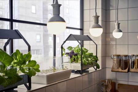 Ikea Coleccion Indoor Gardening 2016 Ph133381 Krydda Modulo Jardinera Acero Negro Galvanizado Lowres