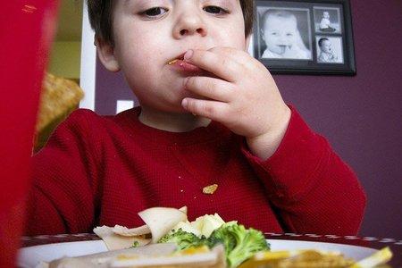 Especial Alimentación Infantil: recomendaciones generales para una alimentación infantil sana (I)