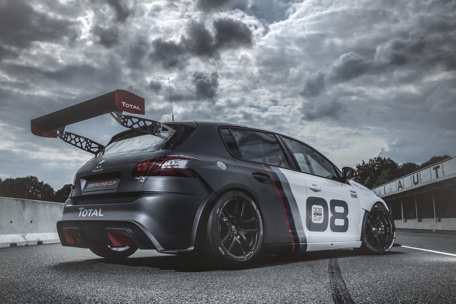 Foto de Peugeot 308 Racing Cup (5/13)