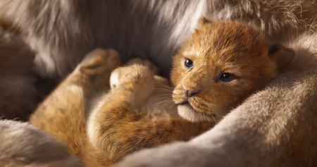 Este es el espectacular primer  trailer de 'The Lion King', la versión live-action del clásico infantil de Disney