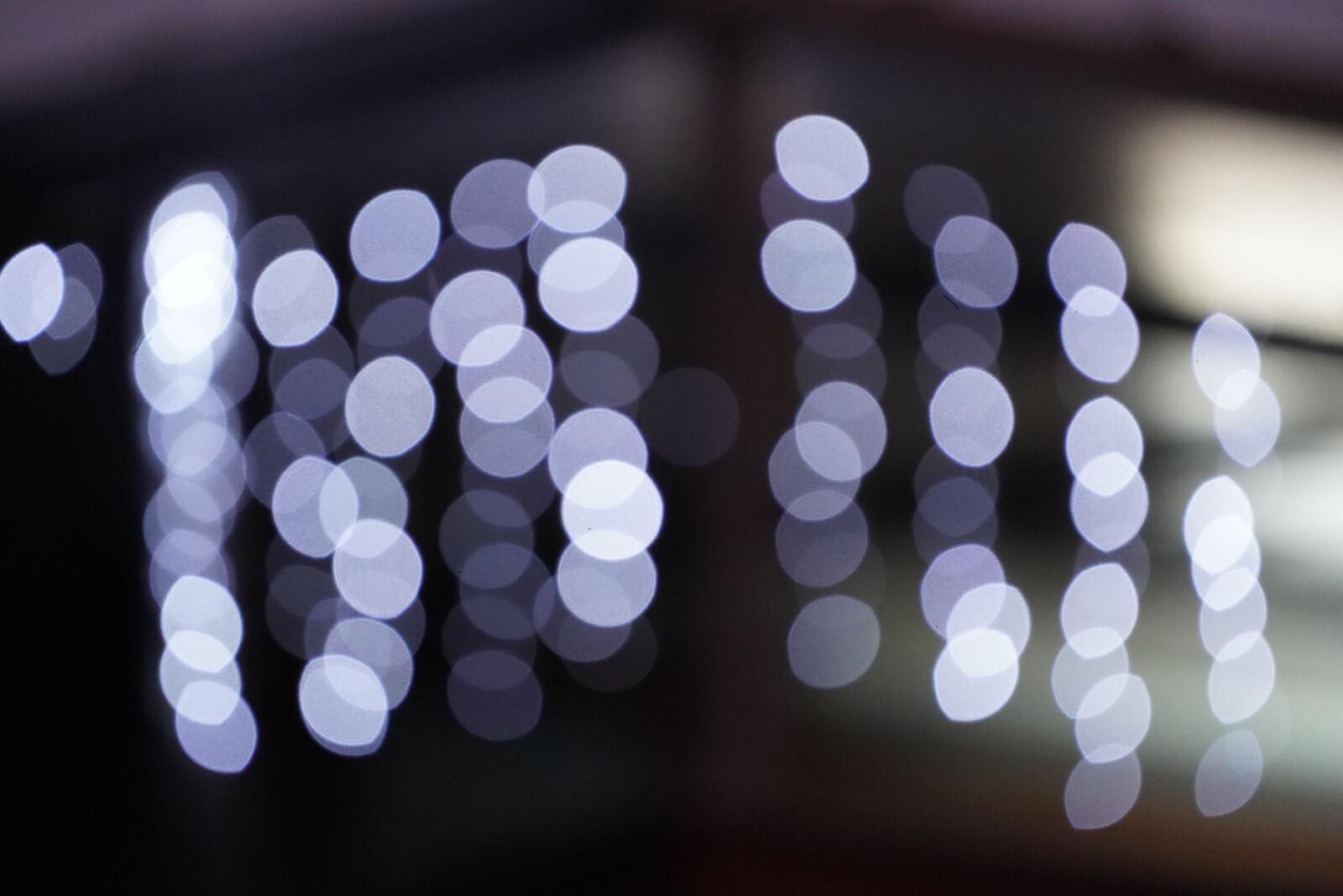 Foto de Galería de muestras Sony A7C (13/54)