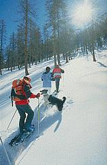 Senderismo con raquetas de nieve