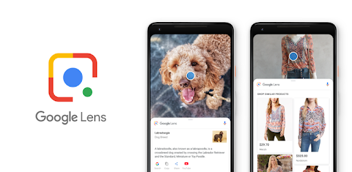 So you can share an image from any application to analyze it with Google Lens