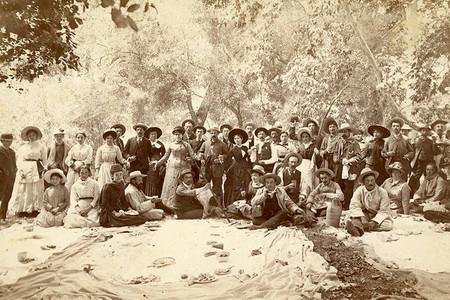 Amilia Mexicana