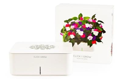 Plantas que se cuidan solas gracias a Click & Grow